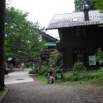 萌木の森3