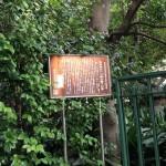奥澤神社3