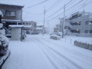 東京雪20160118 1
