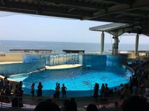 新江ノ島水族館20170708 2