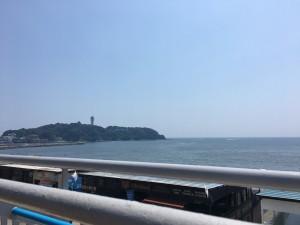 新江ノ島水族館20170708 7