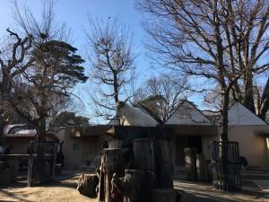 20161224吉祥寺散策5