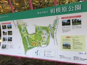 神奈川県立相模原公園1