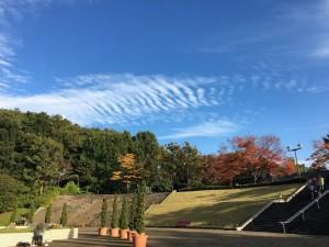 神奈川県立相模原公園7