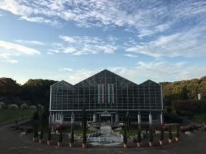 神奈川県立相模原公園10