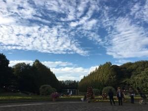 神奈川県立相模原公園6